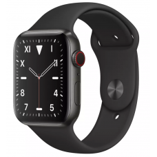 Apple Watch Series 5 Edition 40mm Titanium Case with Gray Sport Band (MWQE2)