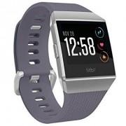 Fitbit Ionic Silver Gray/Blue Gray (FB503WTGU)